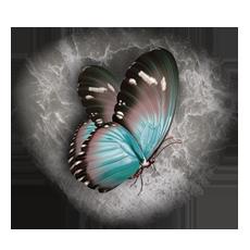 Артикул: БМ014